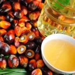 dau-co-palm-oil